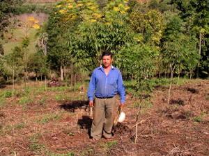Aufforstungsprojekt mit Kleinbauern