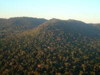 Blick vom Überwachungsflug auf das Schutzgebiet