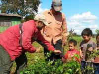 Pflanzungsprogramm mit Kleinbauern