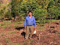 Auffortungsprojekt mit Kleinbauern