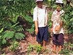 Kinder aus der Nachbarschaft begutachten die frisch gepflanzten Bäume