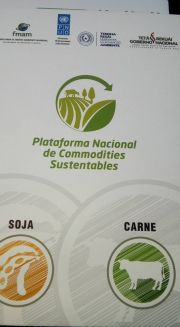 Supporting Environmental Projects