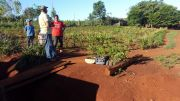 Training on Protective Forests