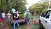 Entrega de plantines de yerba mate