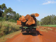Transport of logs