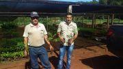 Donación de Plantas Nativas
