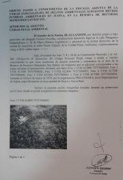CONADERNA denuncia tala ilegal en el Parque San Rafael