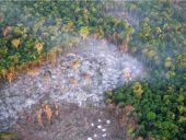 Monitoreo del área protegida: desmonte por incendio, descubierto desde el avión