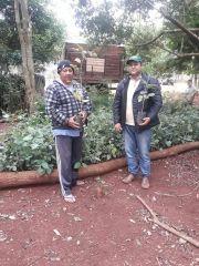 Donación de árboles nativos