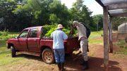 Capacitación sobre Bosques Protectores