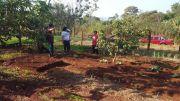 Agroforesteria CECTEC