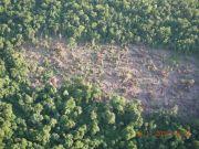 La devastación de San Rafael no para