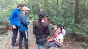 Formando protectores del bosque