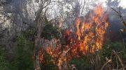 Combate y control de incendios forestales en la Reserva San Rafael - Tekoha Guasu y su zona de influencia.