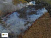 Nuevos Focos de incendios en la RPNSR