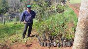 Entrega de Plantas Nativas